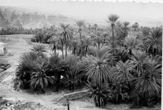 1959 - Opération El oujda